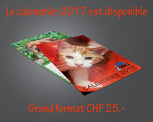 TCalendrier2017